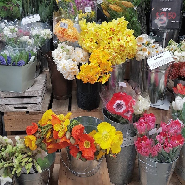 Flower shopping, at Farro Fresh.