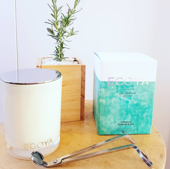 New Zealand Summer candle by Ecoya in 'Coastal Kowhai & Fig
