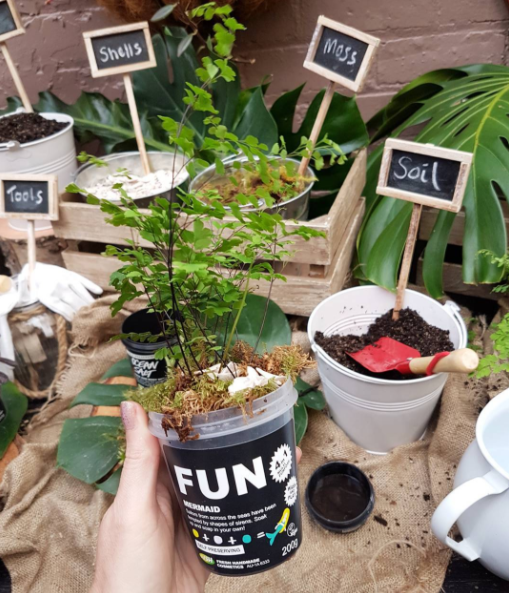 How cool is this idea!? We got to pot our own plants into recycled pots at the LUSH cosmetics Christmas Launch party aptly at The Garden Shed Cafe Mt Eden.