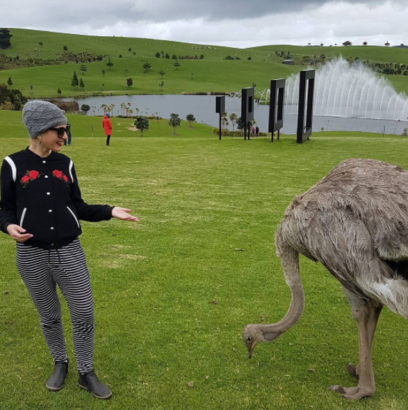 Meeting a friendly ostrich at Gibbs Farm today.